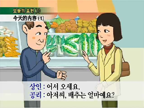 面向外国人的实用韩国语